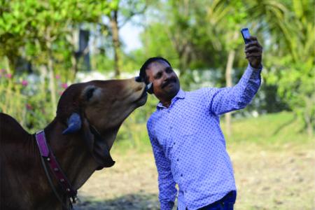 ગાય બચાવવા માટે સેલ્ફી વિથ કાઉ અભિયાન
