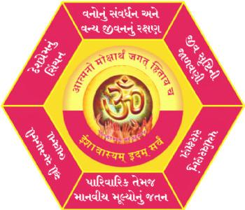 હિન્દુ આધ્યાત્મિક અને સેવા મેળાનું આયોજન