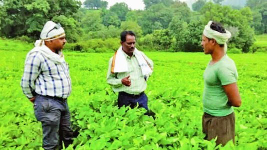 સેંકડો ગામોમાં વહાવી વિકાસની ગંગા