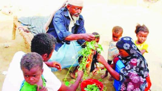 ભૂખમરાથી પીડાતા યમનીઓ પાંદડા ખાવા મજબૂર