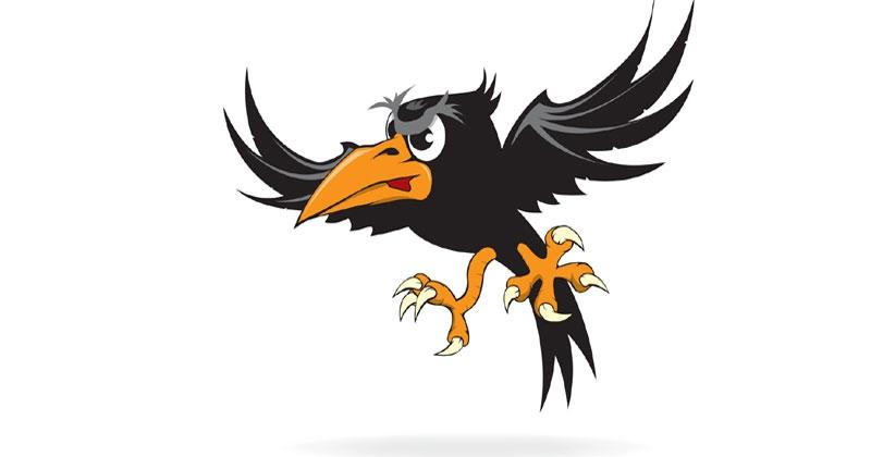 crow_1H x W: