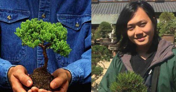 ૪૦૦ વર્ષ જૂના બોનસાઈ વૃક્ષની ચોરી, માલિકની ચોરને ભાવુક અપીલ