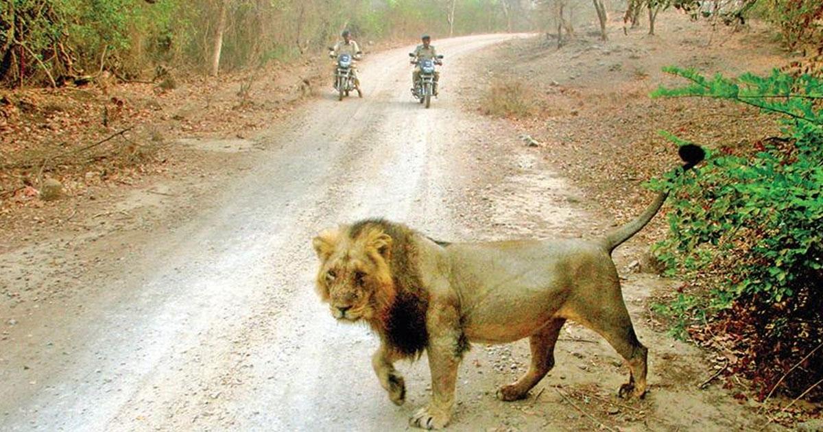 Mitiyala Wildlife Sanctua